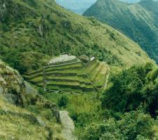Inca trail, machupichu