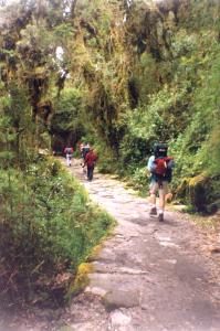 trekking in the Inca trail